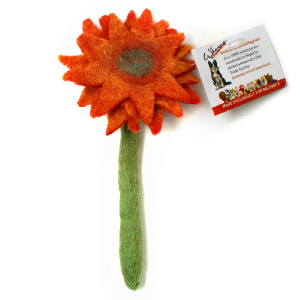 Wool Flower Toy