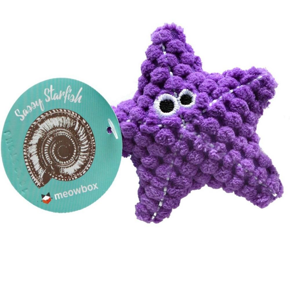 Sassy Starfish